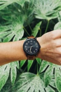 wrist with watch in front of leaves